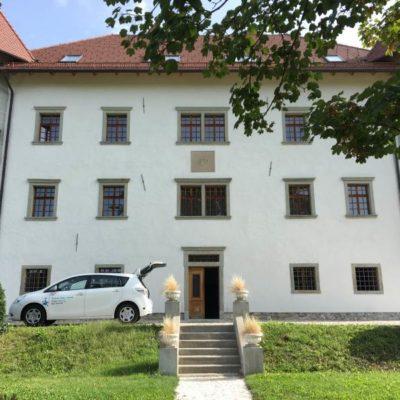 Dvorec Lambergh, Dvorska vas
